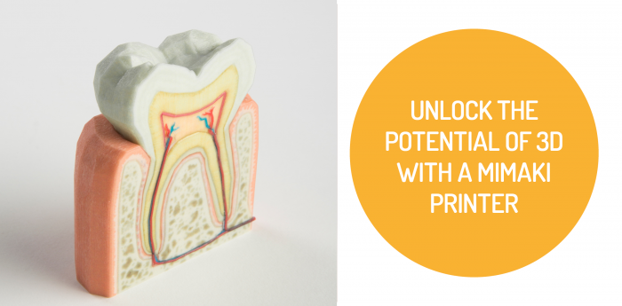 Unlock the Potential of 3D with a Mimaki Printer